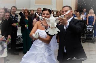 Hochzeitsfotografie Marko Ginster
